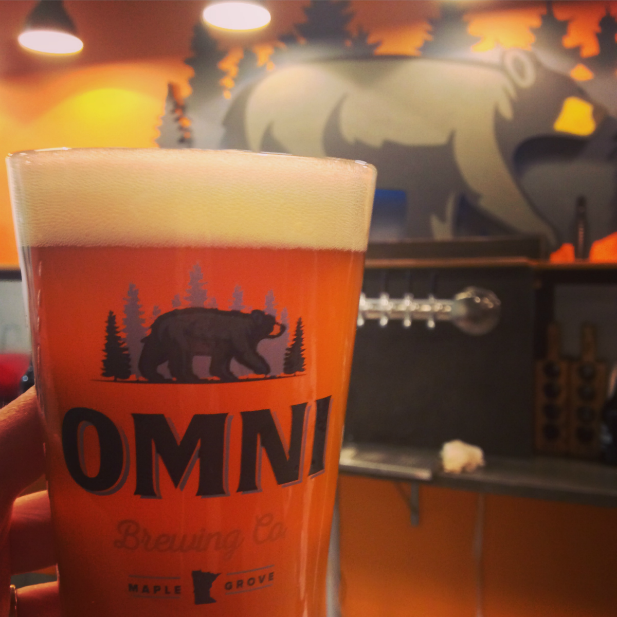 Omni Brewing Pint